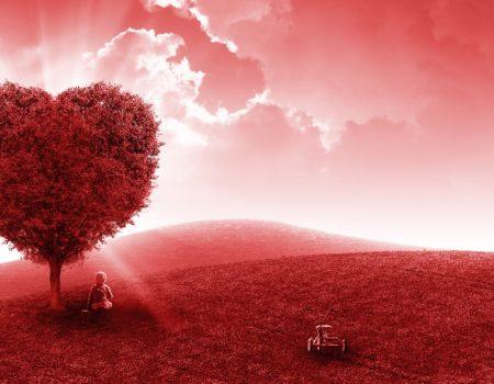引き寄せの法則 幸せになる方法 大切 5つの心